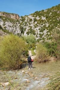 Rodellar Gorge